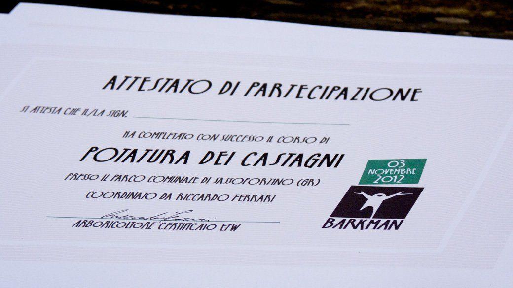 20121103_corso-castagni_1137